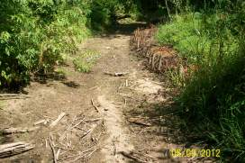 Brackley branch of Winter River completely dried up (Aug. 12th 2012)